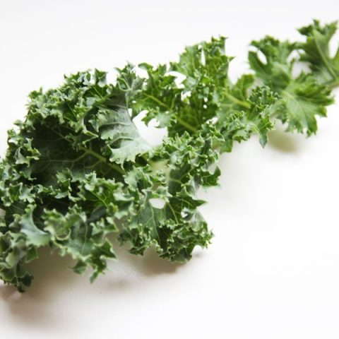 Kale-all-the-rage